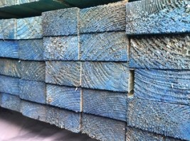 "2x1"" Pressure Treated Timber 4.8m Graded Blue"